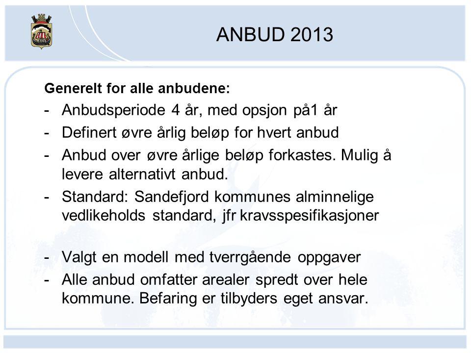 ANBUD 2013 Generelt for alle anbudene: -Anbudsperiode 4 år, med opsjon på1 år -Definert øvre årlig beløp for hvert anbud -Anbud over øvre årlige beløp forkastes.