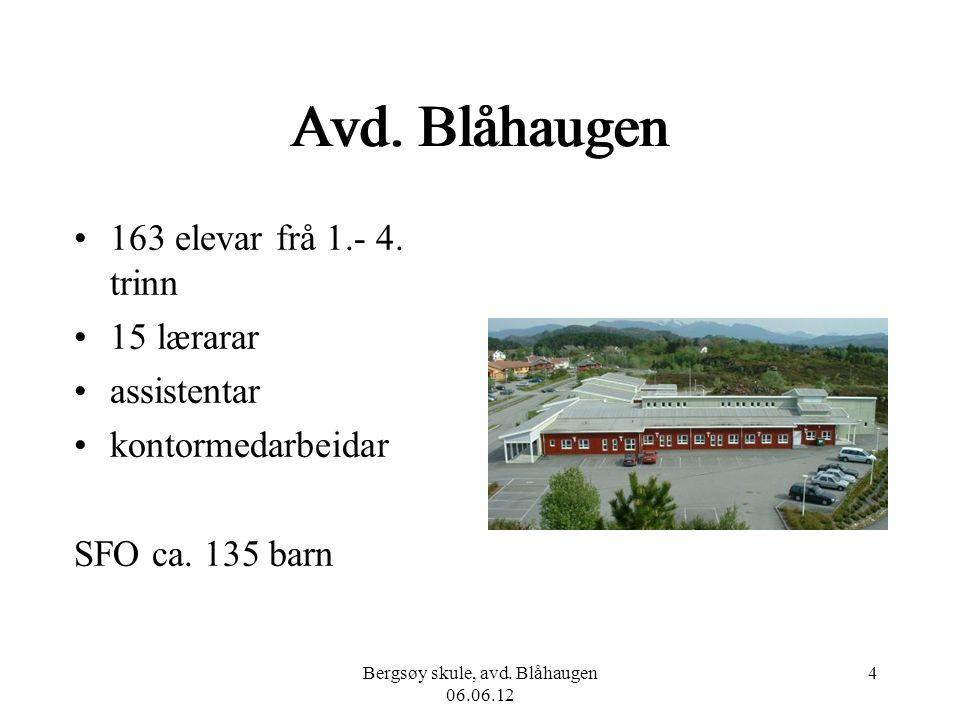 Bergsøy skule, avd. Blåhaugen 06.06.12 4 Avd. Blåhaugen 163 elevar frå 1.- 4. trinn 15 lærarar assistentar kontormedarbeidar SFO ca. 135 barn
