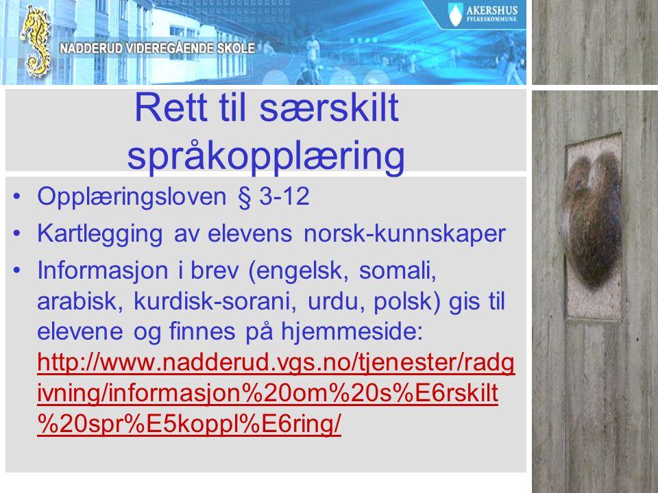 Rett til særskilt språkopplæring Opplæringsloven § 3-12 Kartlegging av elevens norsk-kunnskaper Informasjon i brev (engelsk, somali, arabisk, kurdisk-