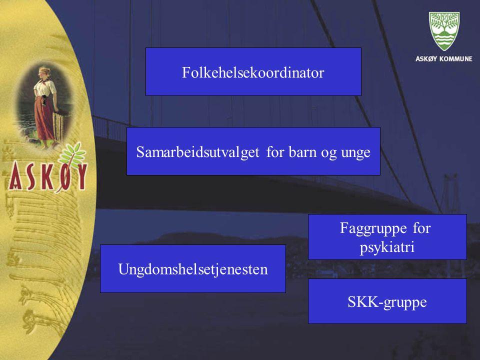 Folkehelsekoordinator Samarbeidsutvalget for barn og unge Ungdomshelsetjenesten Faggruppe for psykiatri SKK-gruppe