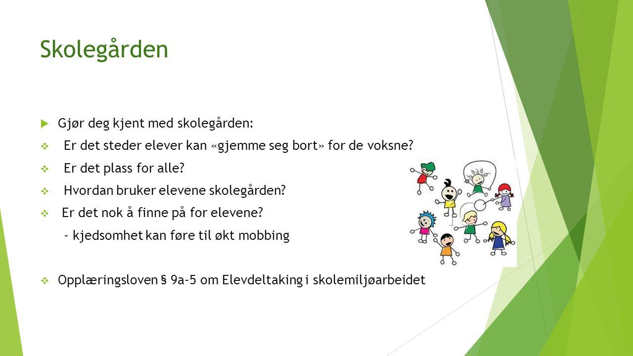 Skolegården  Gjør deg kjent med skolegården:  Er det steder elever kan «gjemme seg bort» for de voksne.