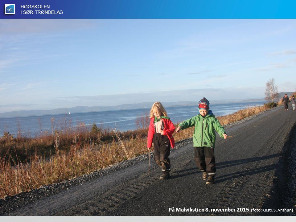 HØGSKOLEN I SØR-TRØNDELAG På Malvikstien 8. november 2015 (foto: Kirsti. S. Anthun)