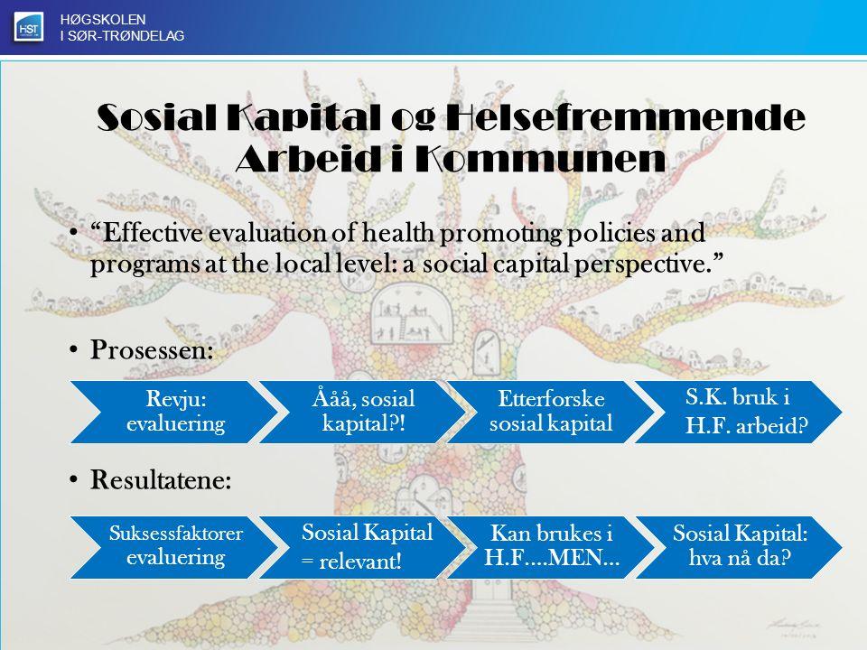 HØGSKOLEN I SØR-TRØNDELAG Kulturell kompetanse som innovativ drivkraft i offentlig sektor Evaluering av planleggingen av Rismelen bypark Inkludering av utenforskap i offentlig planlegging Kulturell kompetanse som medvirkning i planlegging