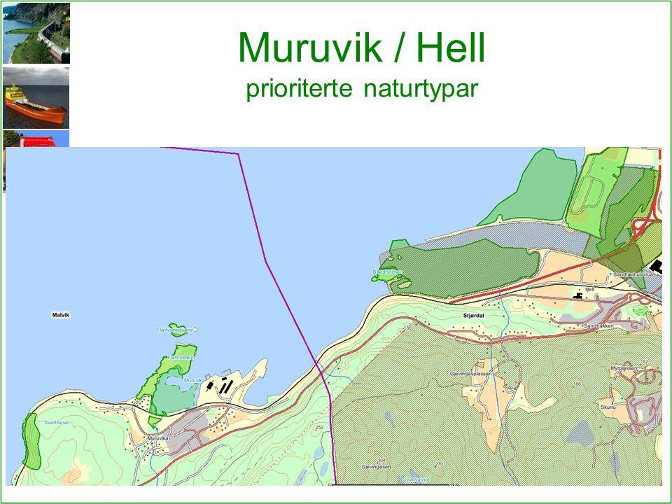 Muruvik / Hell prioriterte naturtypar 5