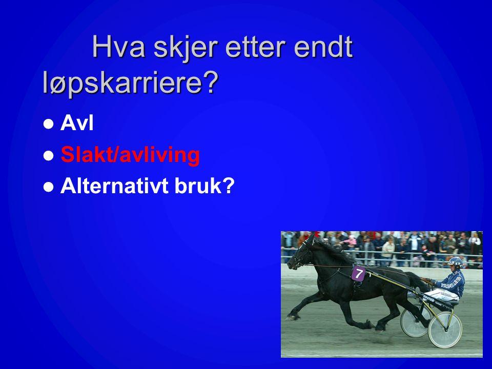 Denne presentasjonen diskuterer 3 tiltak for å bedre hestevelferden Kan /bør DNT etablere – et Hestevelferdsfond? –returpant på hestepass som redusere