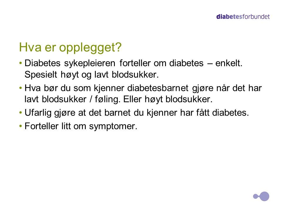 Hva er opplegget? Diabetes sykepleieren forteller om diabetes – enkelt. Spesielt høyt og lavt blodsukker. Hva bør du som kjenner diabetesbarnet gjøre