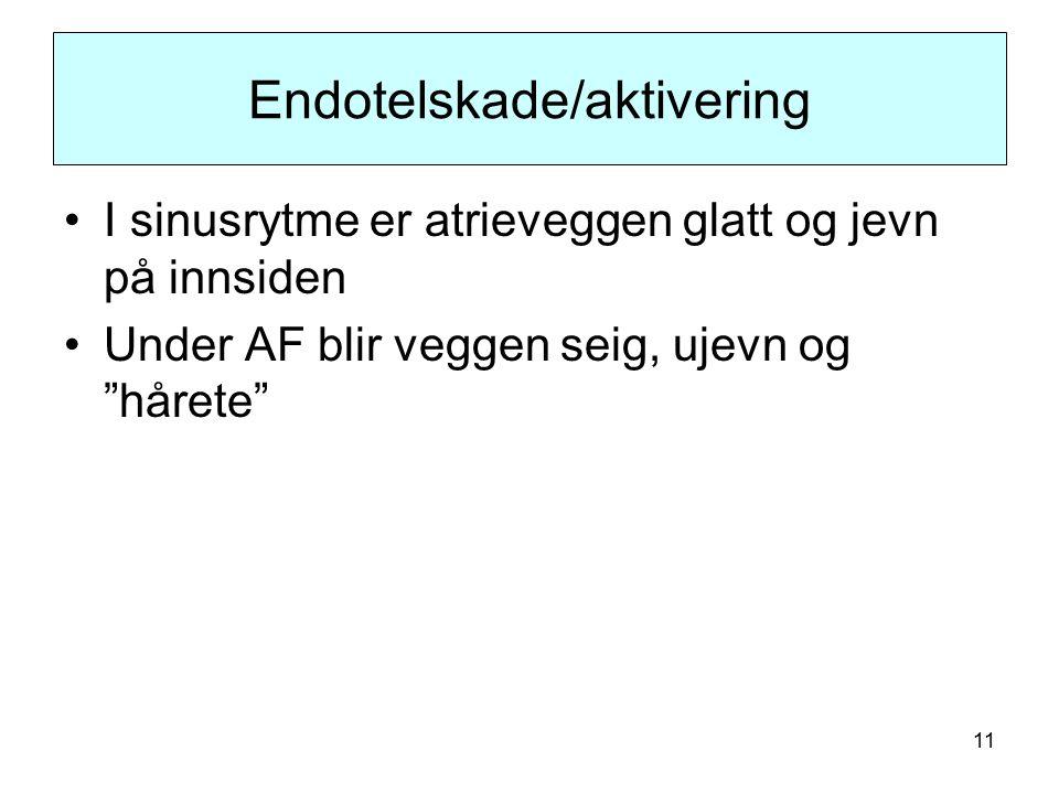 11 Endotelskade/aktivering I sinusrytme er atrieveggen glatt og jevn på innsiden Under AF blir veggen seig, ujevn og hårete
