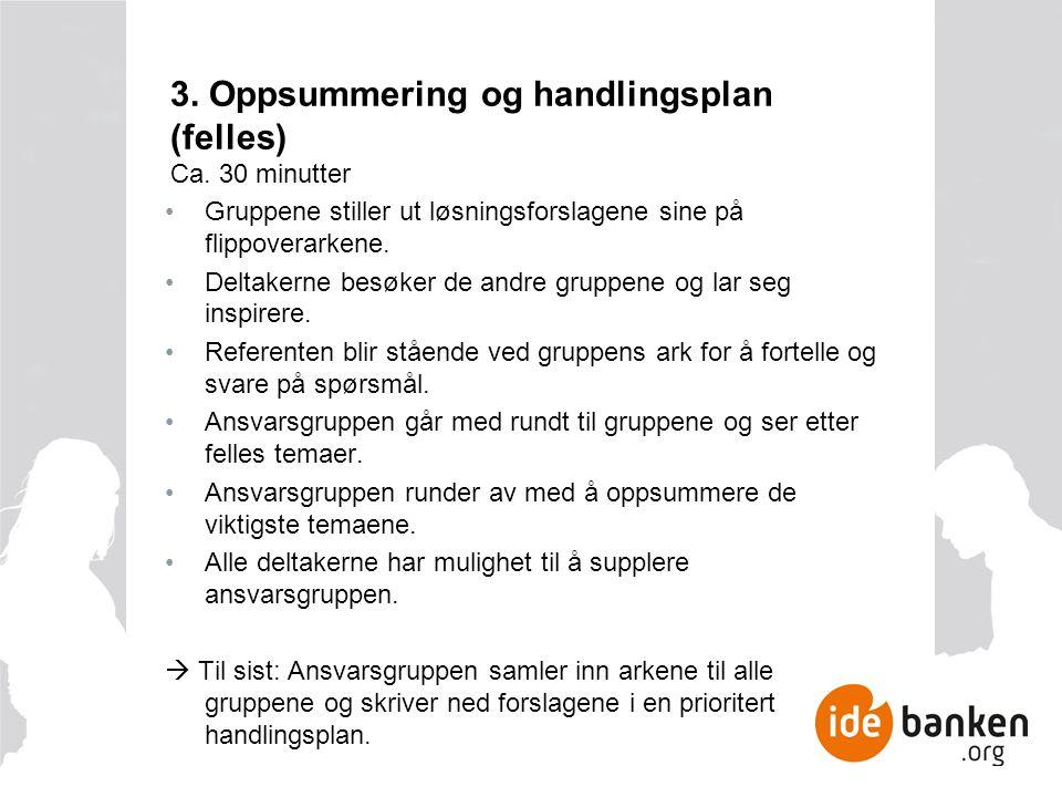 3. Oppsummering og handlingsplan (felles) Ca.
