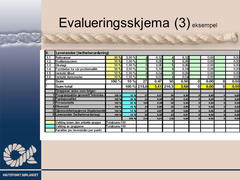 Evalueringsskjema (3) eksempel