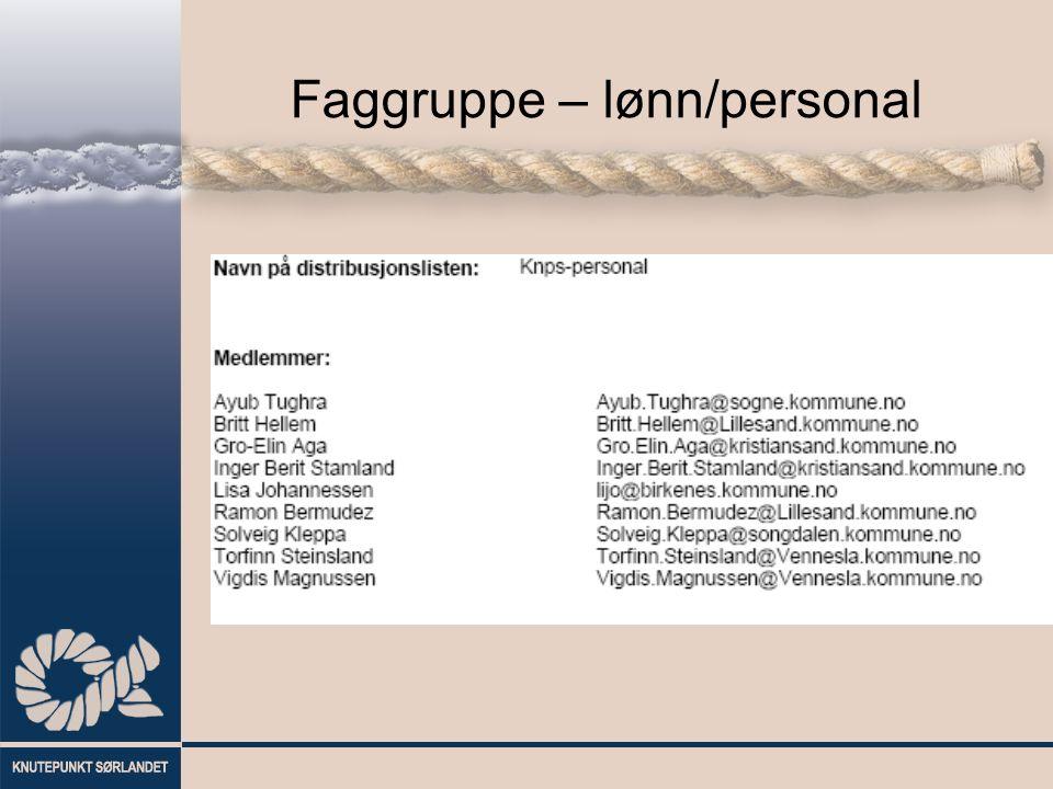 Faggruppe – lønn/personal