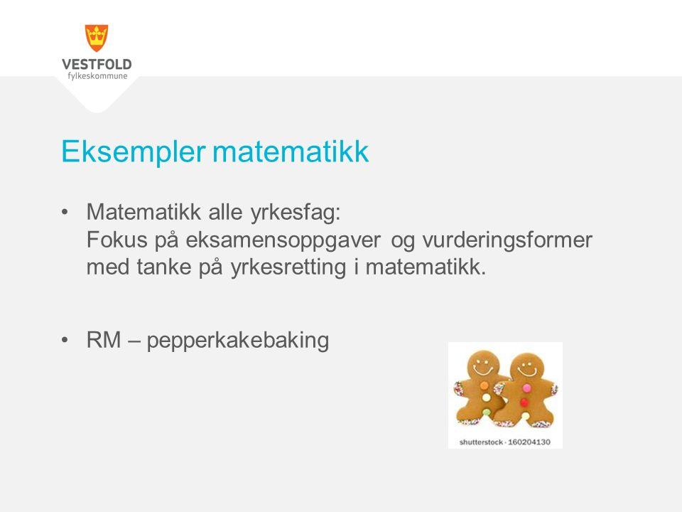 Matematikk alle yrkesfag: Fokus på eksamensoppgaver og vurderingsformer med tanke på yrkesretting i matematikk.