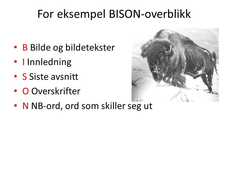 For eksempel BISON-overblikk B Bilde og bildetekster I Innledning S Siste avsnitt O Overskrifter N NB-ord, ord som skiller seg ut