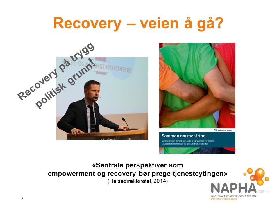 3 Hvordan beskrives recovery i forskningslitteraturen.
