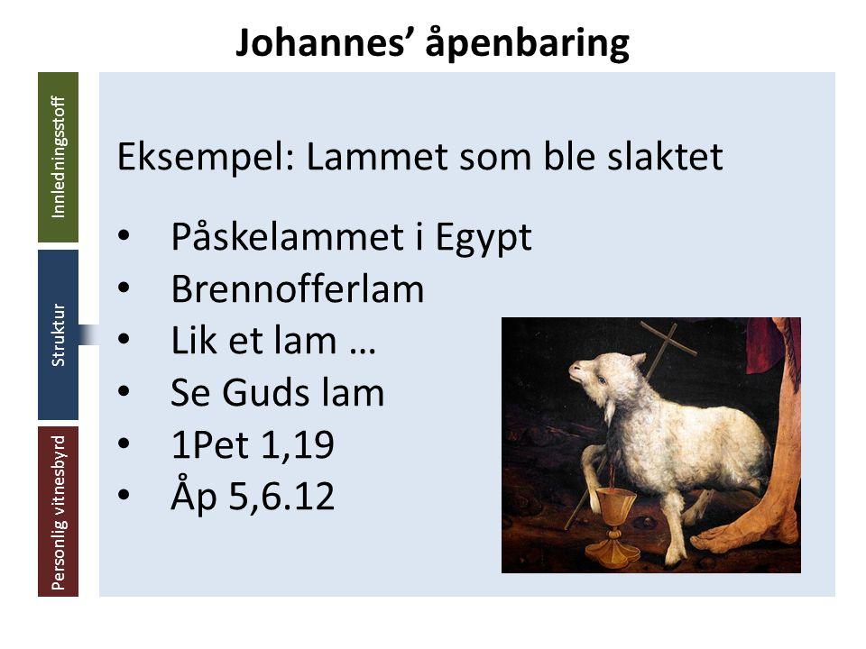 Innledningsstoff Struktur Personlig vitnesbyrd Eksempel: Lammet som ble slaktet Påskelammet i Egypt Brennofferlam Lik et lam … Se Guds lam 1Pet 1,19 Åp 5,6.12 Johannes' åpenbaring