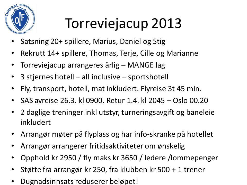 Gothia 2013 - Hvem skal delta Turneringen spilles 14.-20 juli Gutter 12, 13, 15, 16 og 18, Jenter 13 og 15 – satsningslag.
