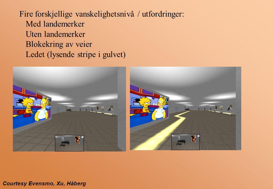 Courtesy Evensmo, Xu, Håberg Fire forskjellige vanskelighetsnivå / utfordringer: Med landemerker Uten landemerker Blokekring av veier Ledet (lysende stripe i gulvet)
