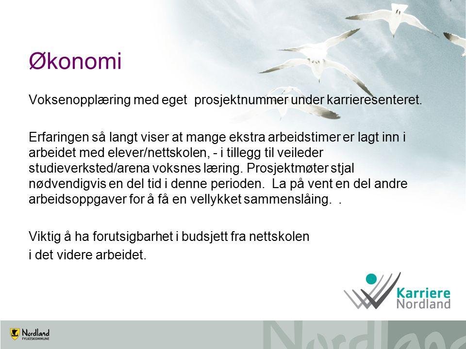 Økonomi Voksenopplæring med eget prosjektnummer under karrieresenteret.