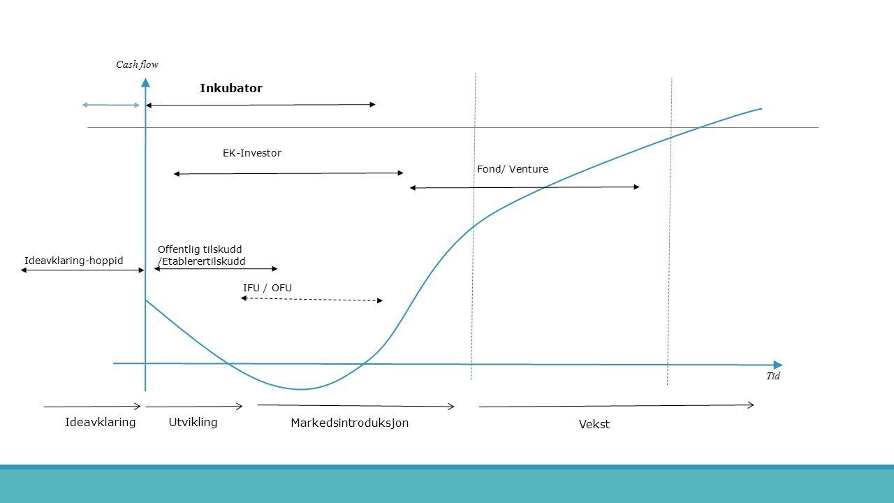 Cash flow Tid Ideavklaring Markedsintroduksjon Vekst Utvikling IFU / OFU Fond/ Venture Offentlig tilskudd /Etablerertilskudd Ideavklaring-hoppid EK-In