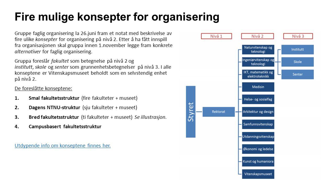 Fire mulige konsepter for organisering Gruppe faglig organisering la 26.juni fram et notat med beskrivelse av fire ulike konsepter for organisering på