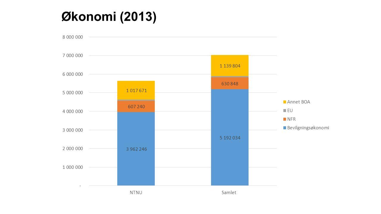 Økonomi (2013)