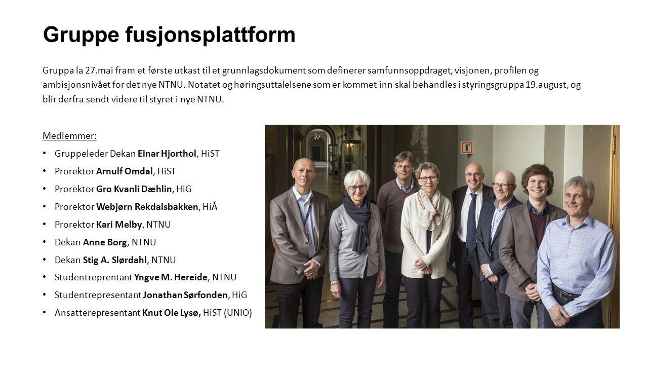 Gruppe fusjonsplattform Gruppa la 27.mai fram et første utkast til et grunnlagsdokument som definerer samfunnsoppdraget, visjonen, profilen og ambisjo