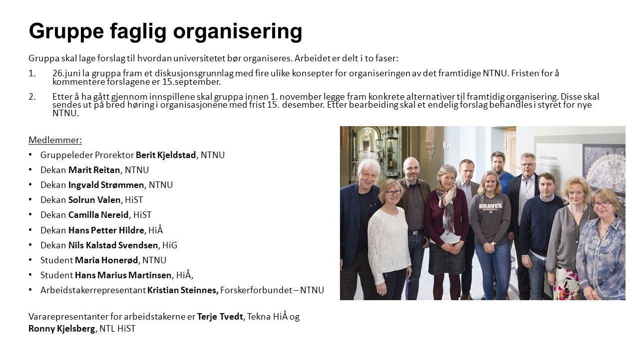 Fire mulige konsepter for organisering Gruppe faglig organisering la 26.juni fram et notat med beskrivelse av fire ulike konsepter for organisering på nivå 2.