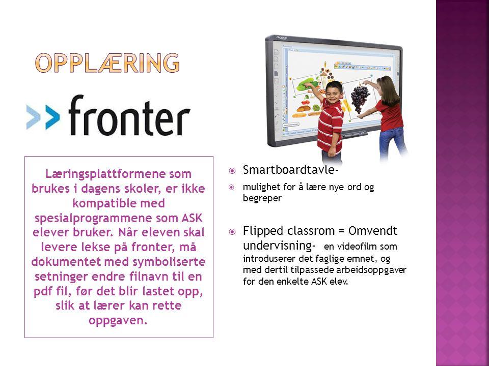 Læringsplattformene som brukes i dagens skoler, er ikke kompatible med spesialprogrammene som ASK elever bruker. Når eleven skal levere lekse på front