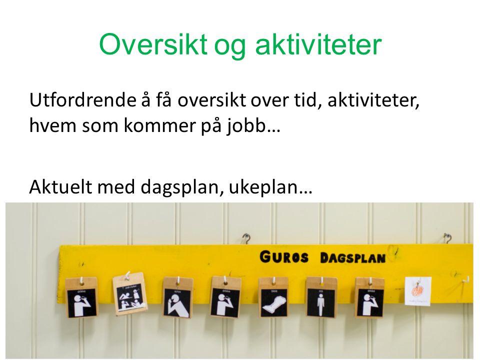 Oversikt og aktiviteter Utfordrende å få oversikt over tid, aktiviteter, hvem som kommer på jobb… Aktuelt med dagsplan, ukeplan… Del 325