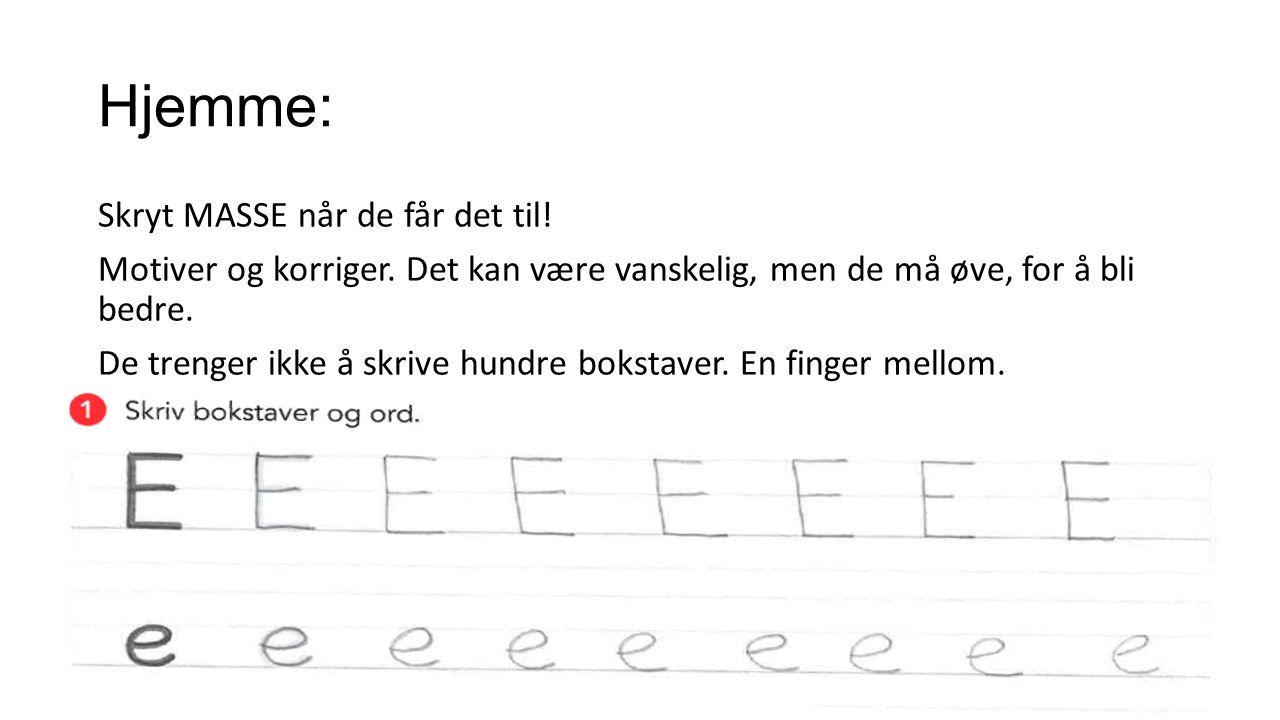 Forlag Etter jul begynner vi med forlag.Da tegner og skriver elevene bøker.