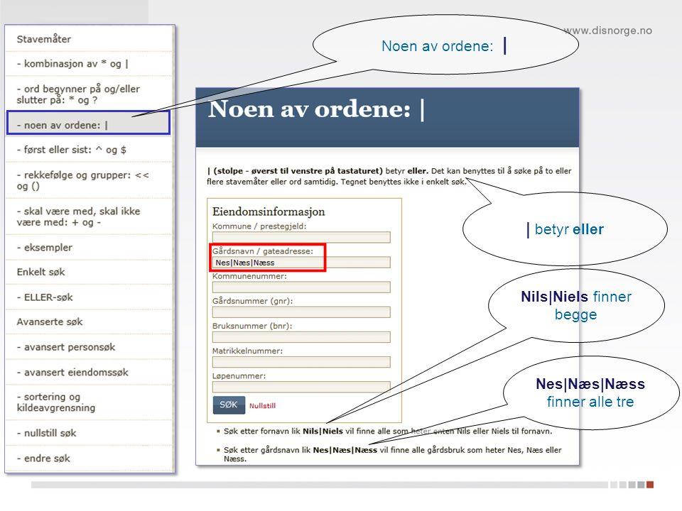 Nils|Niels finner begge | betyr eller Nes|Næs|Næss finner alle tre Noen av ordene: |