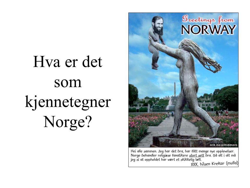 Hva er det som kjennetegner Norge