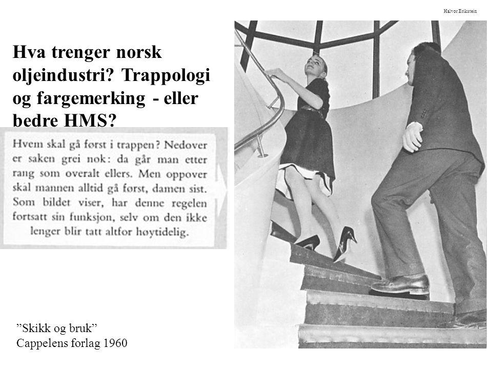 Skikk og bruk Cappelens forlag 1960 Halvor Erikstein Hva trenger norsk oljeindustri.