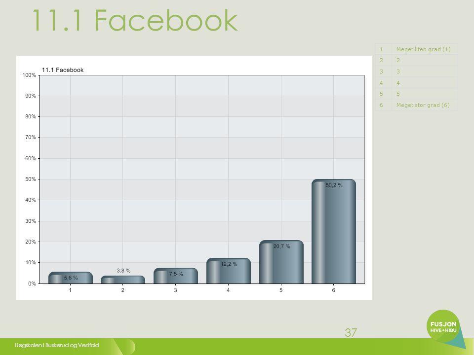 Høgskolen i Buskerud og Vestfold 37 11.1 Facebook 1Meget liten grad (1) 22 33 44 55 6Meget stor grad (6)