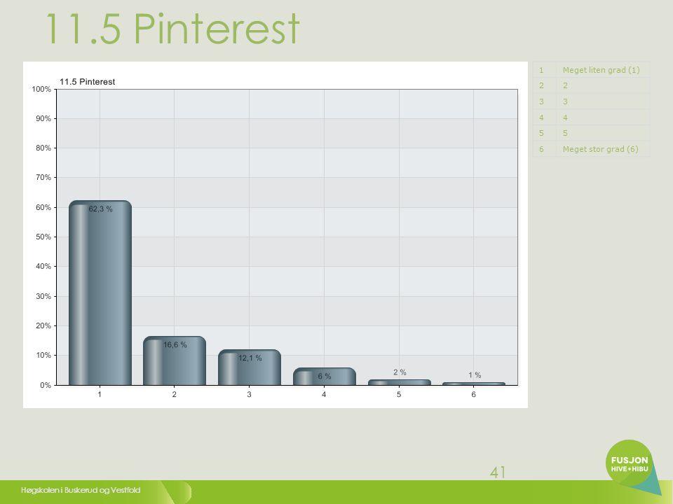 Høgskolen i Buskerud og Vestfold 41 11.5 Pinterest 1Meget liten grad (1) 22 33 44 55 6Meget stor grad (6)