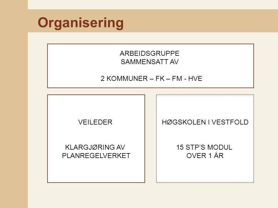 Organisering ARBEIDSGRUPPE SAMMENSATT AV 2 KOMMUNER – FK – FM - HVE VEILEDER KLARGJØRING AV PLANREGELVERKET HØGSKOLEN I VESTFOLD 15 STP'S MODUL OVER 1 ÅR