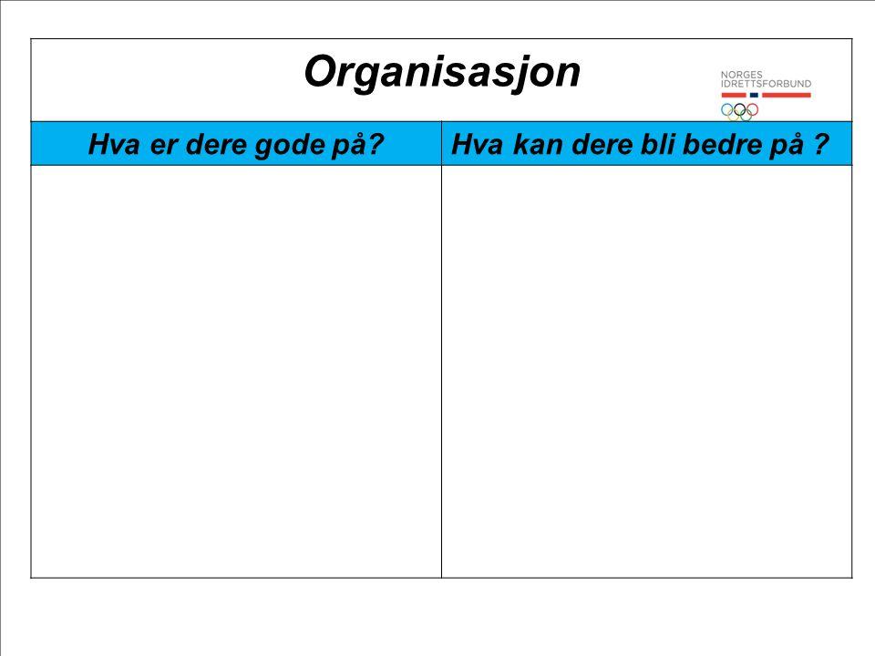 Organisasjon Hva er dere gode på Hva kan dere bli bedre på