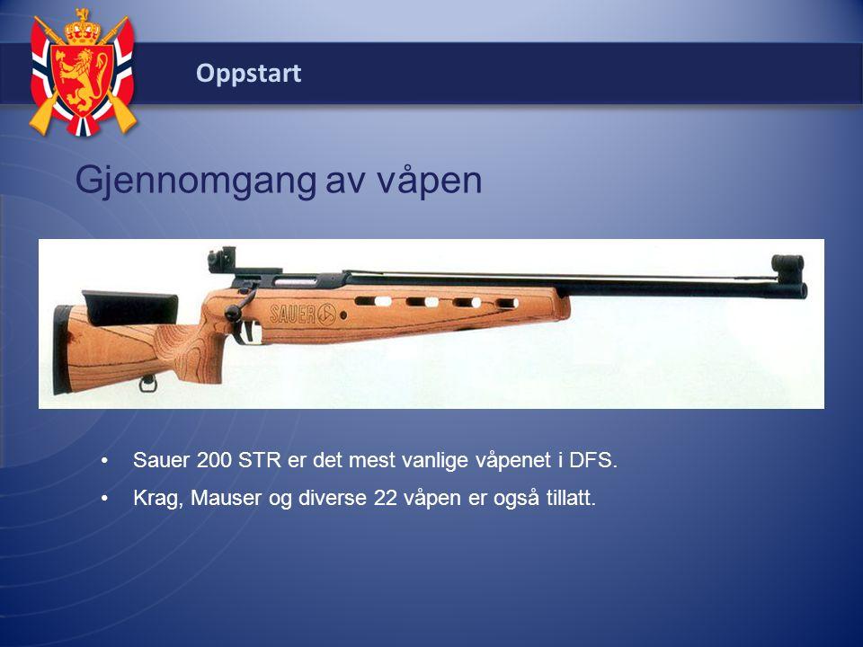Oppstart Gjennomgang av våpen Sauer 200 STR er det mest vanlige våpenet i DFS.