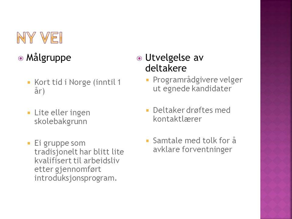  Målgruppe  Kort tid i Norge (inntil 1 år)  Lite eller ingen skolebakgrunn  Ei gruppe som tradisjonelt har blitt lite kvalifisert til arbeidsliv etter gjennomført introduksjonsprogram.