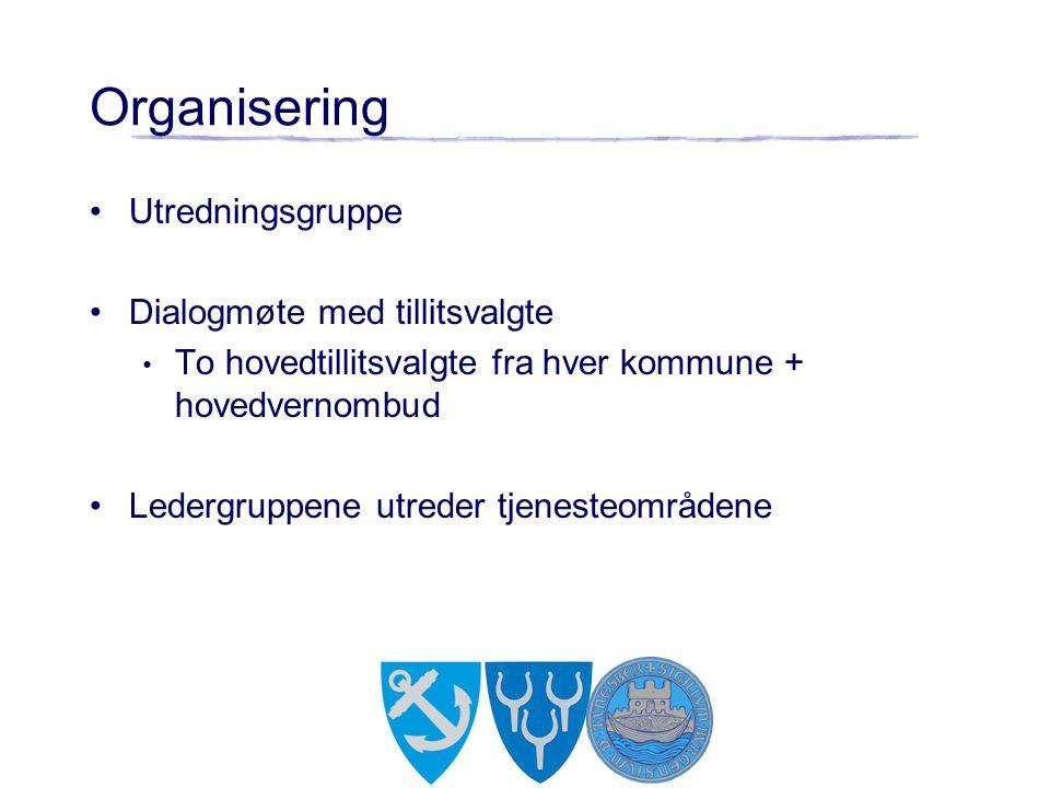 Organisering Utredningsgruppe Dialogmøte med tillitsvalgte To hovedtillitsvalgte fra hver kommune + hovedvernombud Ledergruppene utreder tjenesteområdene