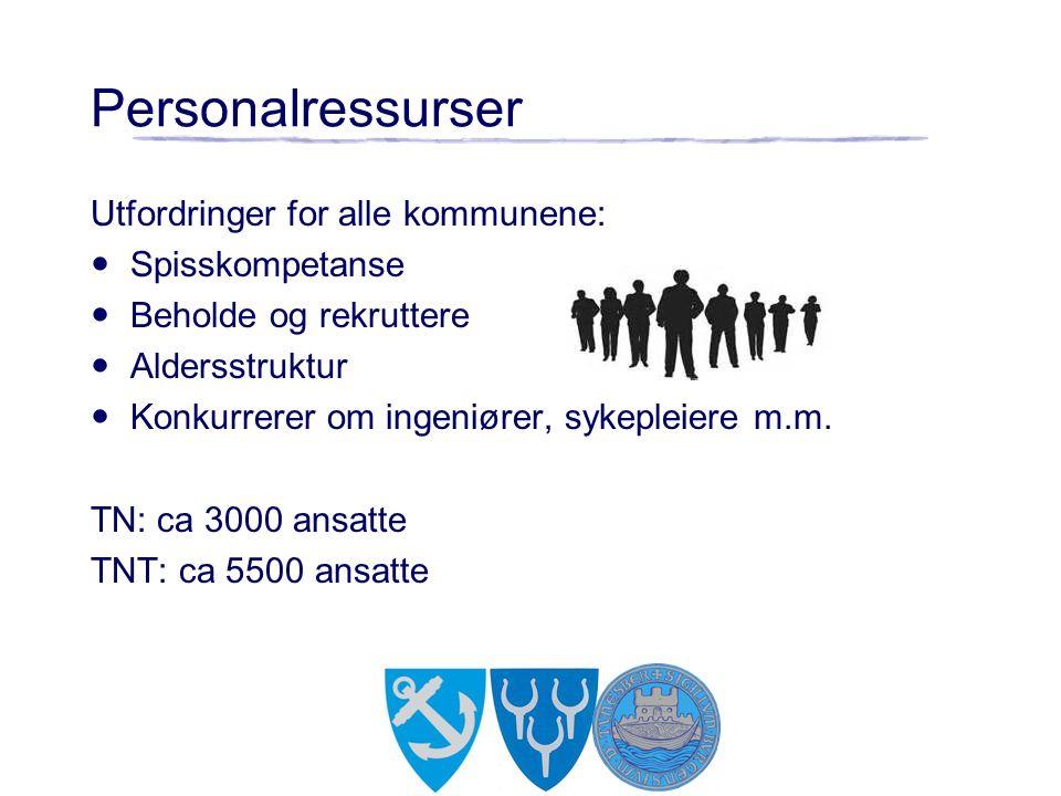 Personalressurser Utfordringer for alle kommunene: Spisskompetanse Beholde og rekruttere Aldersstruktur Konkurrerer om ingeniører, sykepleiere m.m.