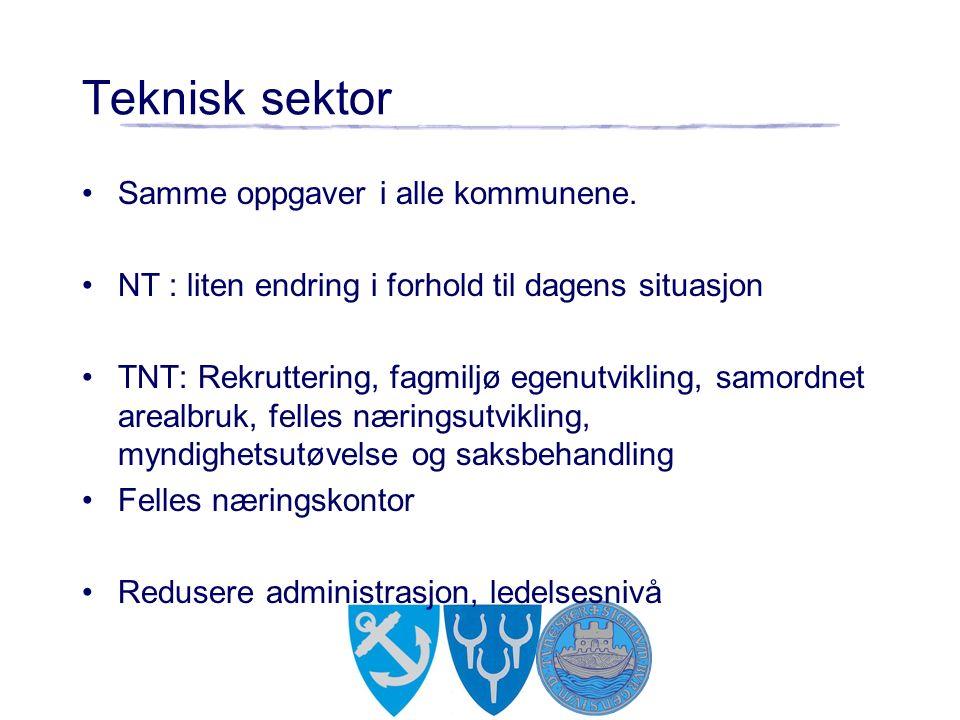 Teknisk sektor Samme oppgaver i alle kommunene.