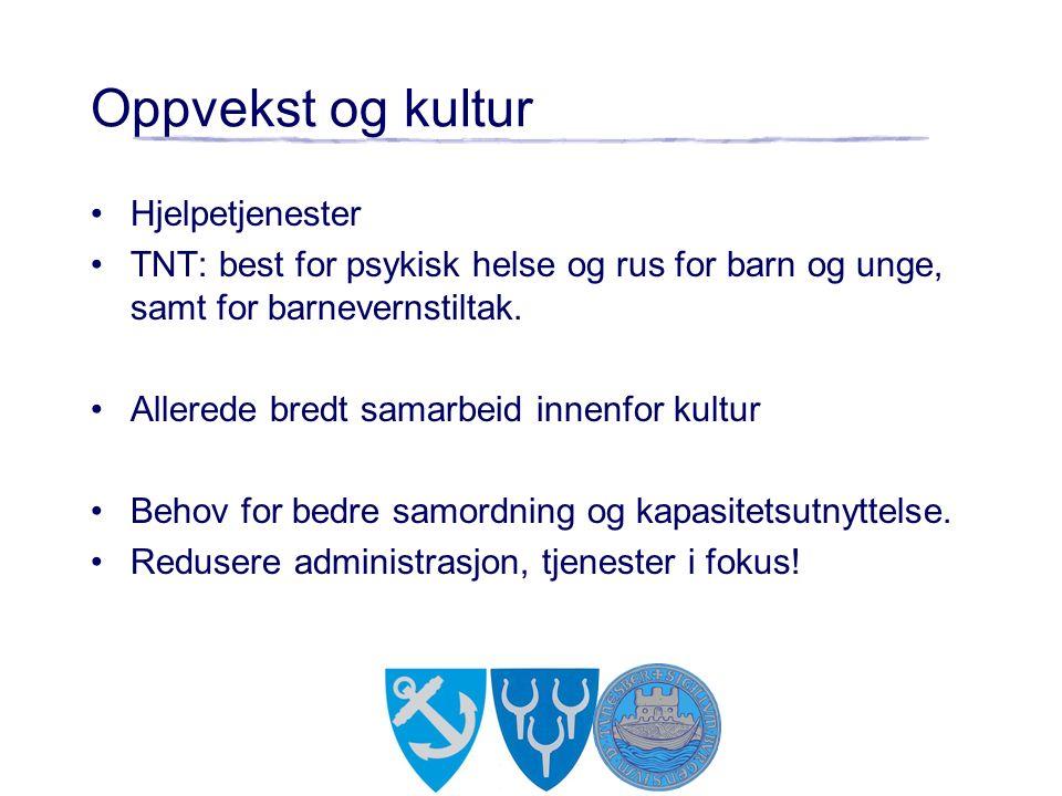 Oppvekst og kultur Hjelpetjenester TNT: best for psykisk helse og rus for barn og unge, samt for barnevernstiltak.