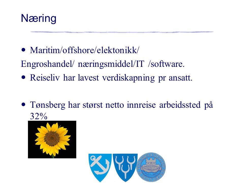 Næring Maritim/offshore/elektonikk/ Engroshandel/ næringsmiddel/IT /software. Reiseliv har lavest verdiskapning pr ansatt. Tønsberg har størst netto i