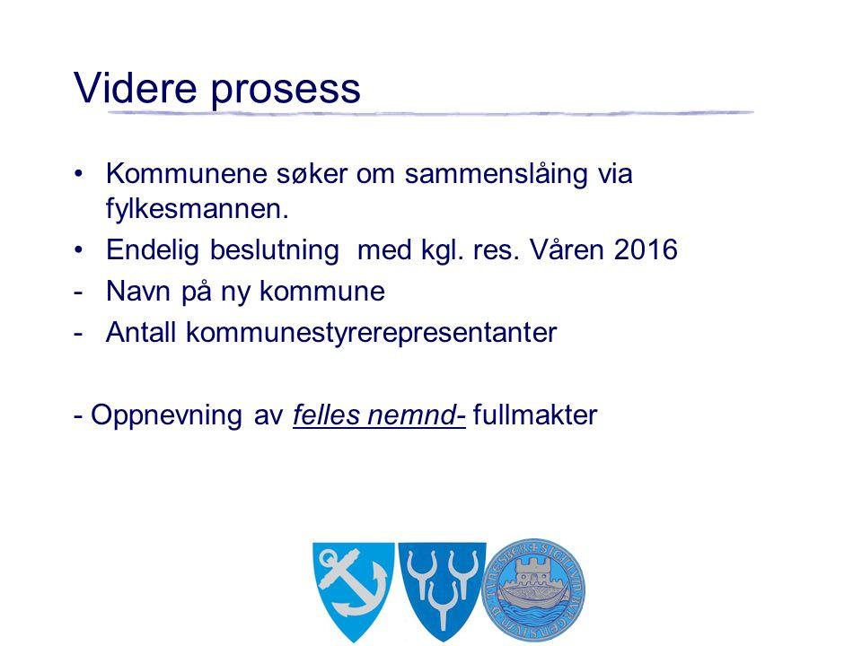 Videre prosess Kommunene søker om sammenslåing via fylkesmannen.
