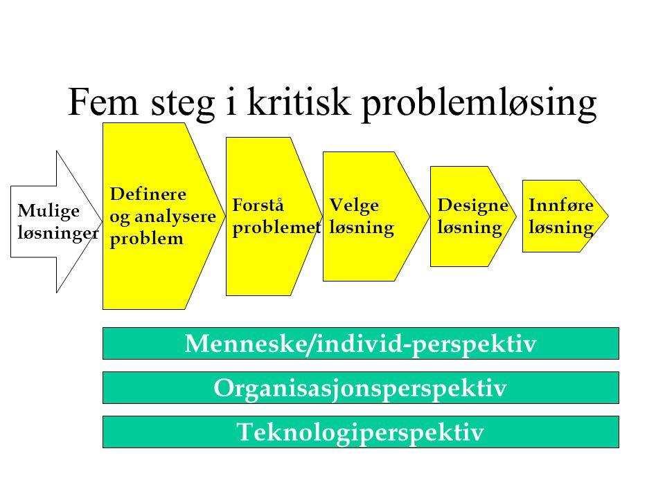 Fem steg i kritisk problemløsing Definere og analysere problem Forstå problemet Velge løsning Designe løsning Innføre løsning Mulige løsninger Menneske/individ-perspektiv Organisasjonsperspektiv Teknologiperspektiv Kilde: Laudon & Laudon, kapittel 9