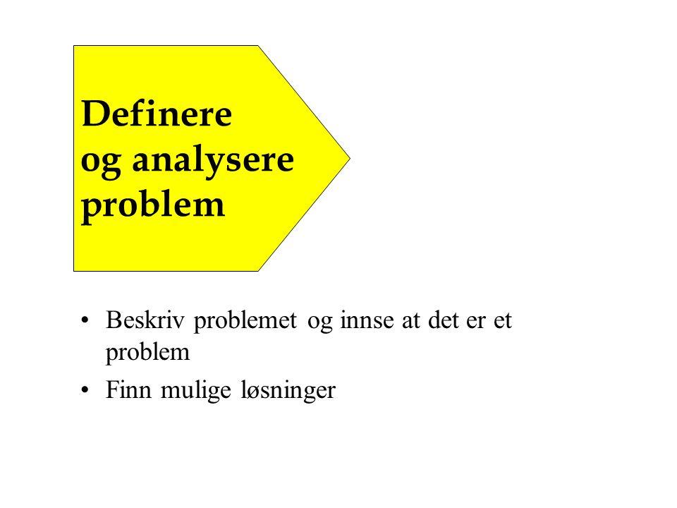 Beskriv problemet og innse at det er et problem Finn mulige løsninger Definere og analysere problem