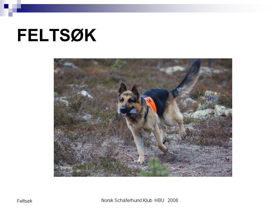 Norsk Schäferhund Klub HBU 2008 Feltsøk FELTSØK