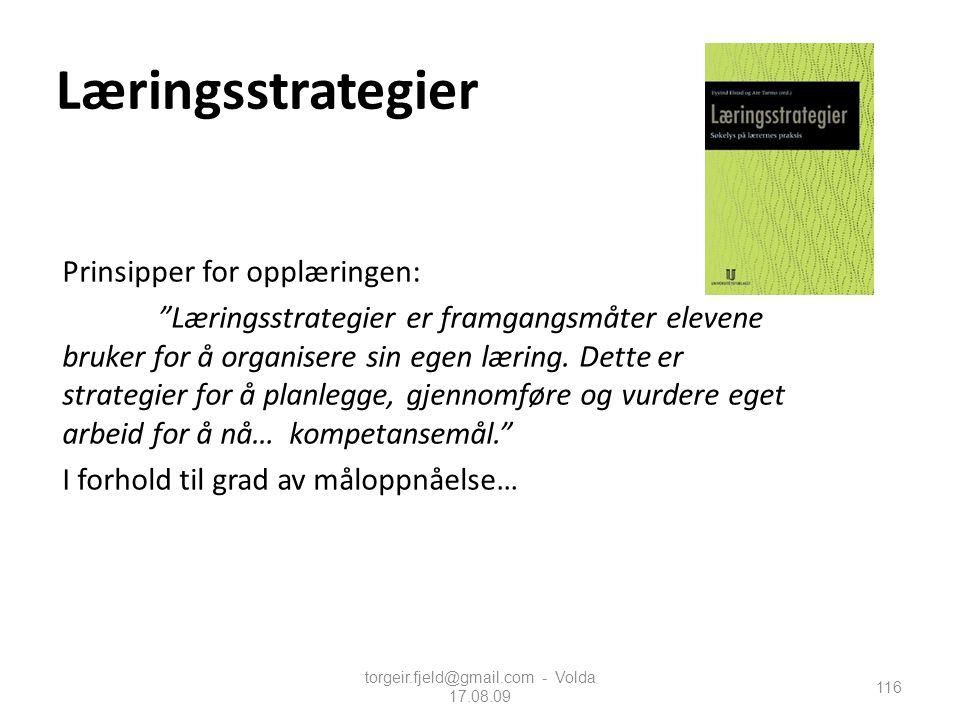 """torgeir.fjeld@gmail.com - Volda 17.08.09 Læringsstrategier Prinsipper for opplæringen: """"Læringsstrategier er framgangsmåter elevene bruker for å organ"""