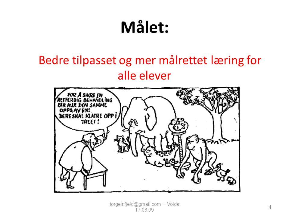 torgeir.fjeld@gmail.com - Volda 17.08.09 105 Å ha eit felles begrepsspråk: Lærere har i liten grad et profesjonelt fagspråk.