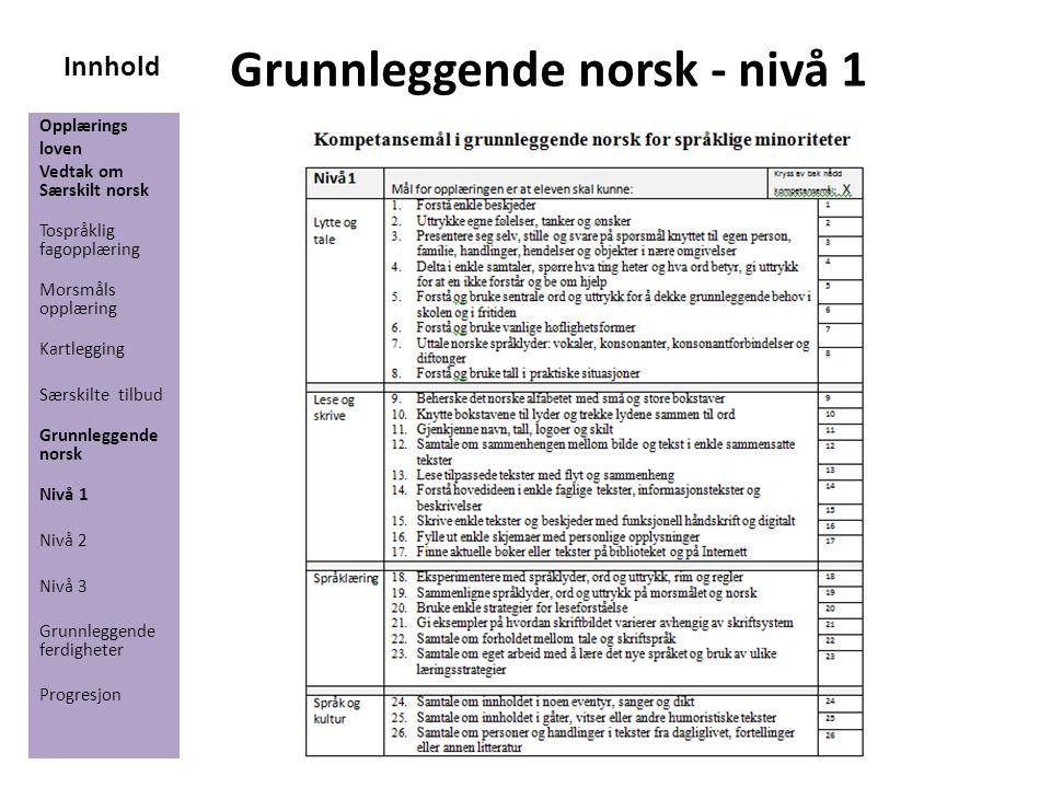Innhold Grunnleggende norsk - nivå 1 Opplærings loven Vedtak om Særskilt norsk Tospråklig fagopplæring Morsmåls opplæring Kartlegging Særskilte tilbud
